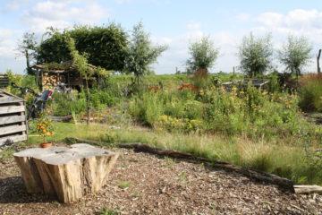 tuin met CO2 tafel agrodome