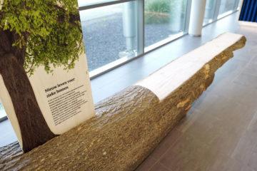 informatie over 'Nieuw leven voor zieke bomen'
