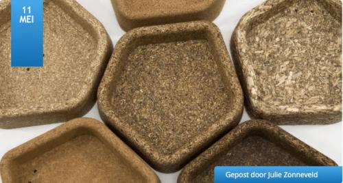 Column: Biobased bouwen staat niet in de kinderschoenen