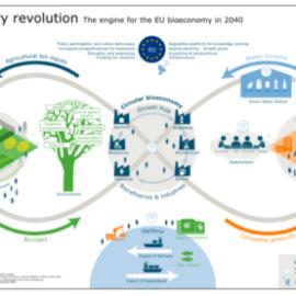 afbeelding van Periphery revolution for bioeconomy 2040