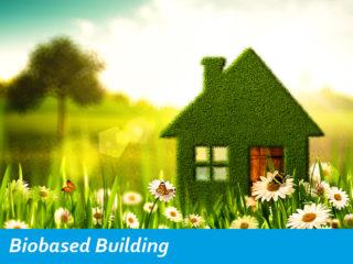 Biobased building van gras in de natuur met bloemen en bijtjes