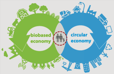 schematisch beeld biobased en circular economy