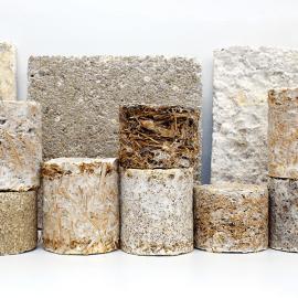 mycelium testblokken